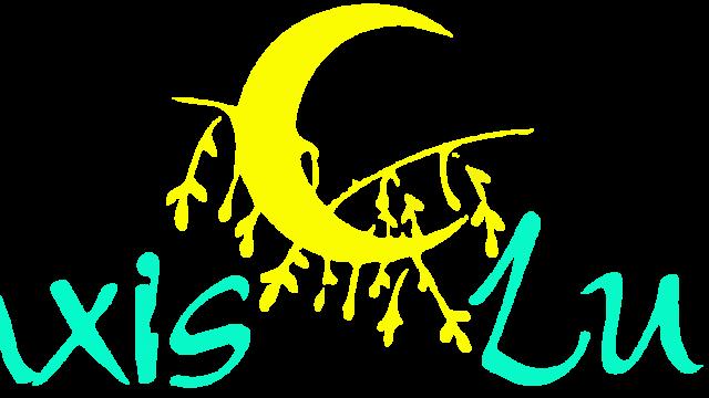 Logo Praxis Luna